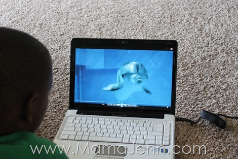 Dolphin Tale 2 Curriculum Review